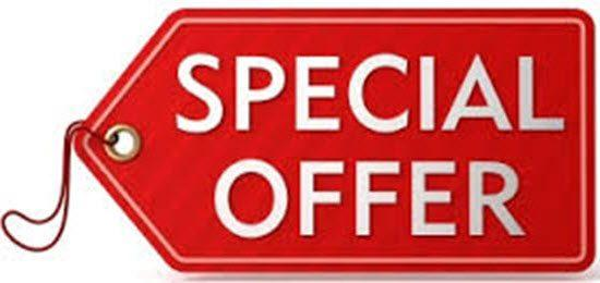 Special offer garage repair