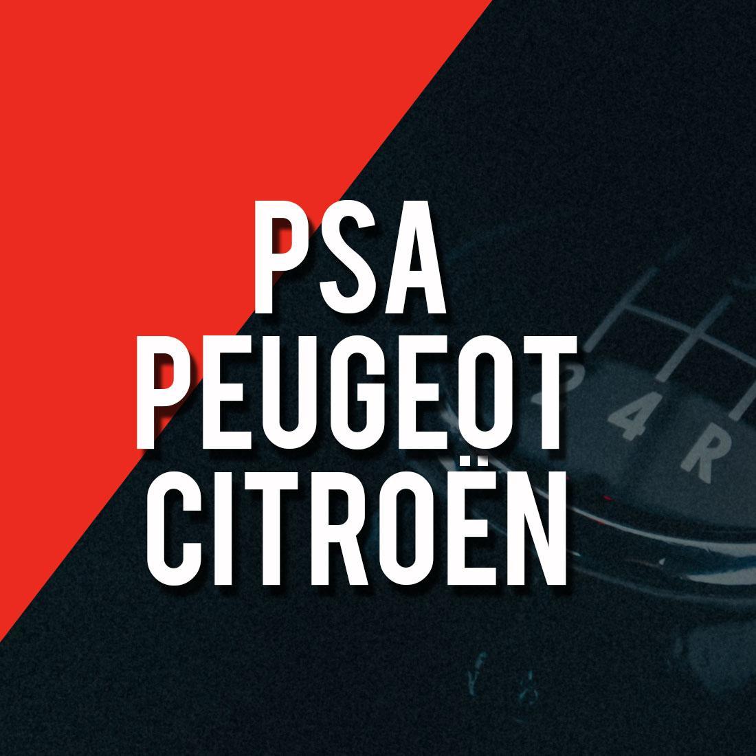PSA Peugeot Citroen Logo