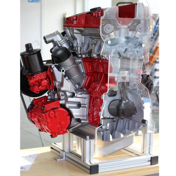 MPI-chain-cutaway-model