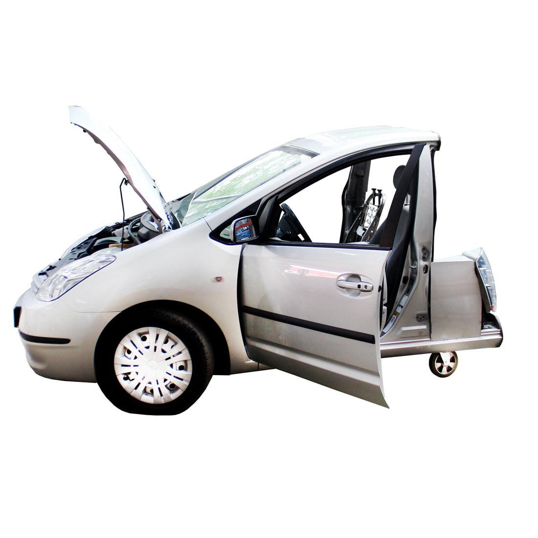 PMTP1-hybrid-functional-model