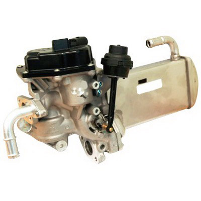 EGR Valves and Coolers